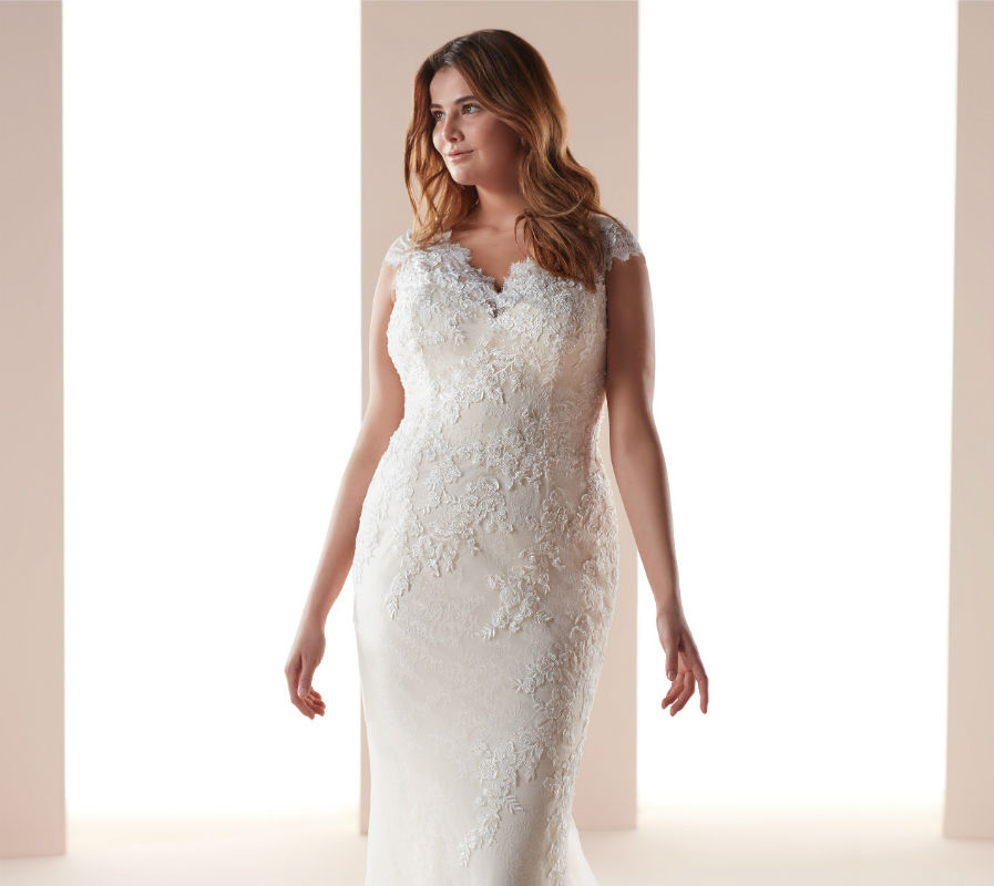 Nicole Milano collection Curves 40496